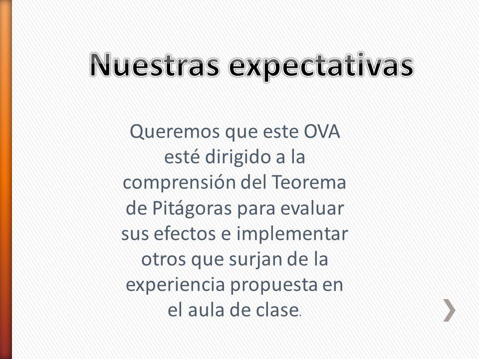 Nuestras expectativas