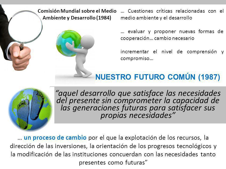 Comisión Mundial sobre el Medio Ambiente y Desarrollo (1984)