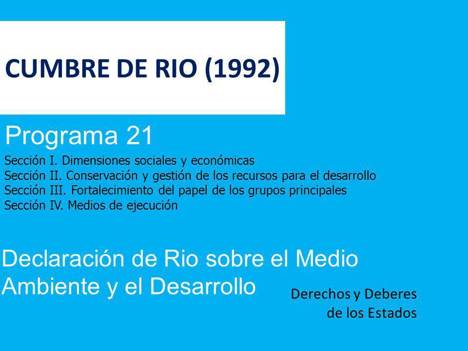 CUMBRE DE RIO (1992) Programa 21