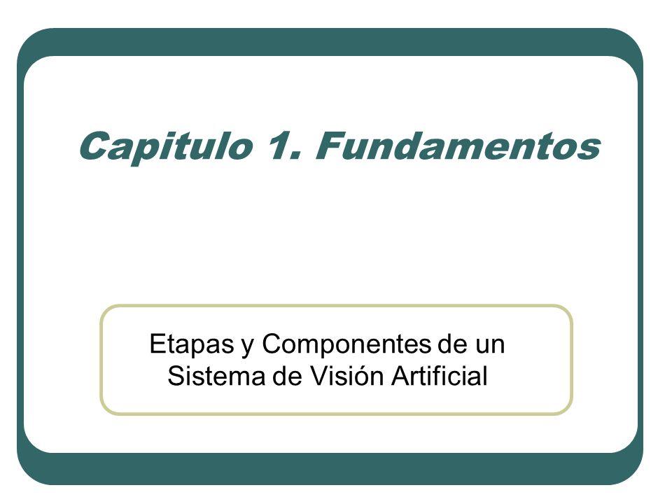 Etapas y Componentes de un Sistema de Visión Artificial