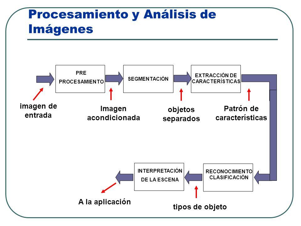 Procesamiento y Análisis de Imágenes