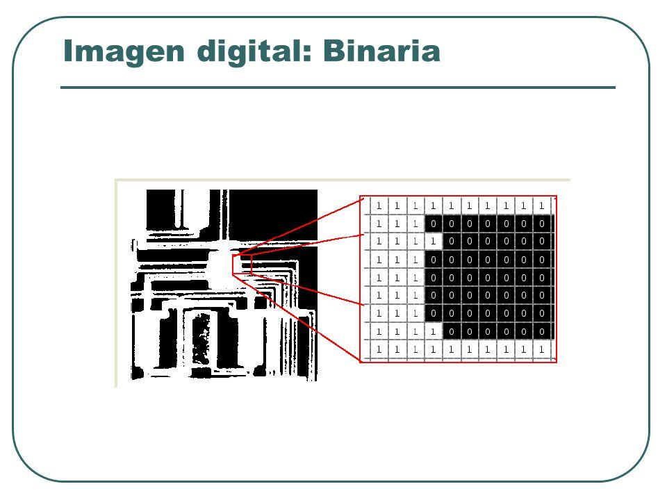 Imagen digital: Binaria