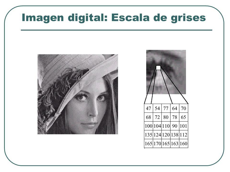 Imagen digital: Escala de grises