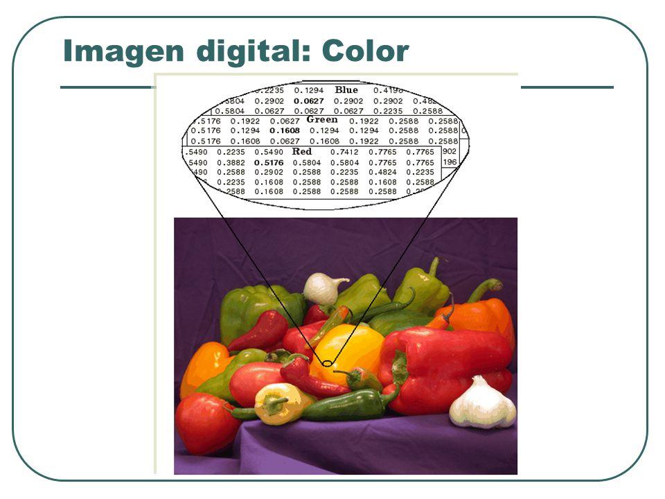 Imagen digital: Color