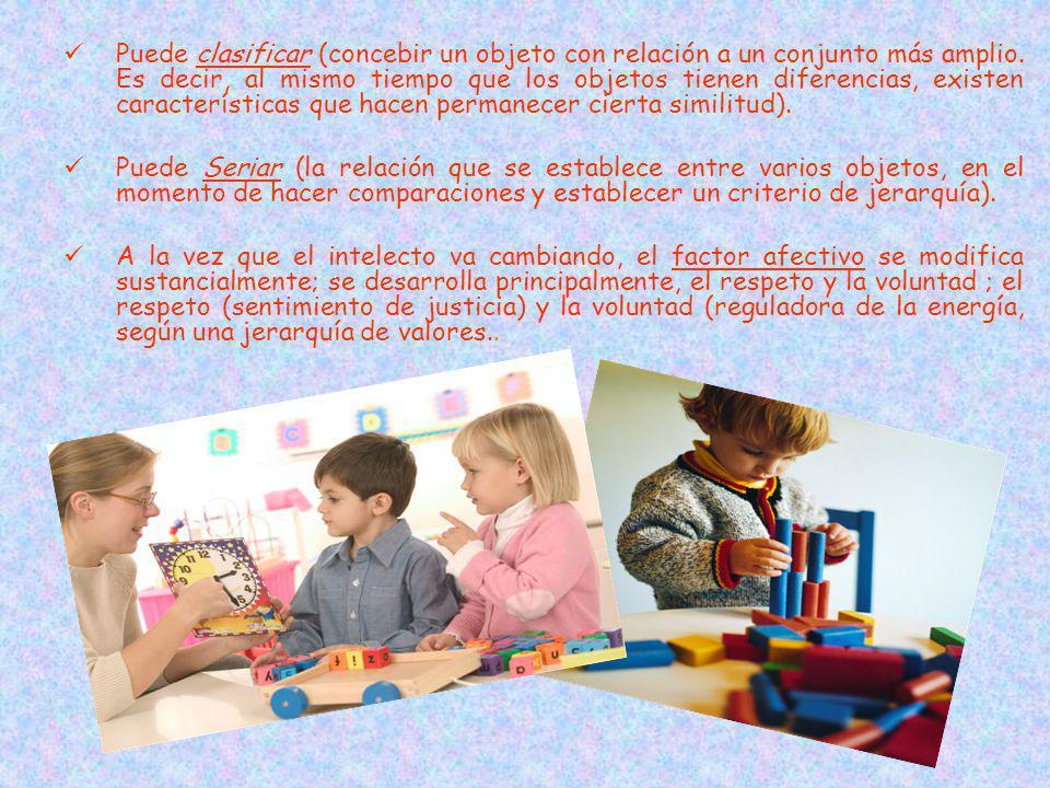 Puede clasificar (concebir un objeto con relación a un conjunto más amplio. Es decir, al mismo tiempo que los objetos tienen diferencias, existen características que hacen permanecer cierta similitud).