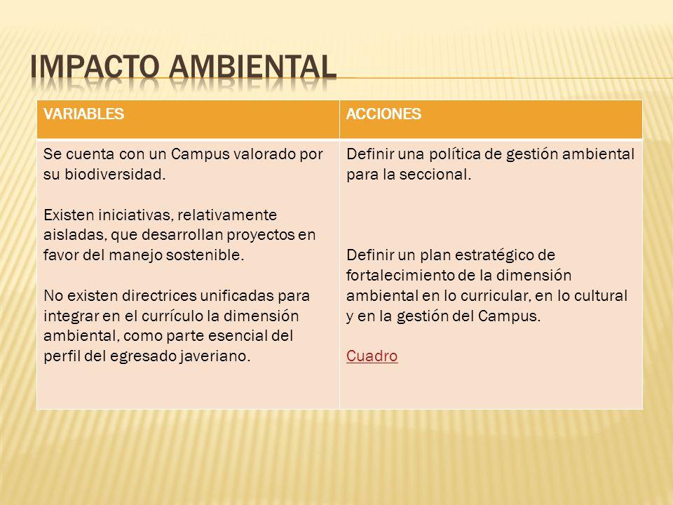 IMPACTO AMBIENTAL VARIABLES ACCIONES