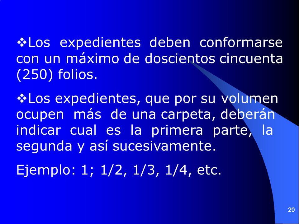 Los expedientes deben conformarse con un máximo de doscientos cincuenta (250) folios.