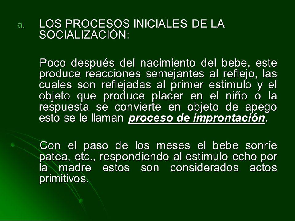 LOS PROCESOS INICIALES DE LA SOCIALIZACIÓN: