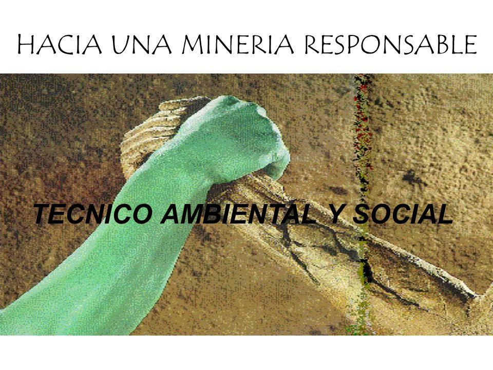 TECNICO AMBIENTAL Y SOCIAL