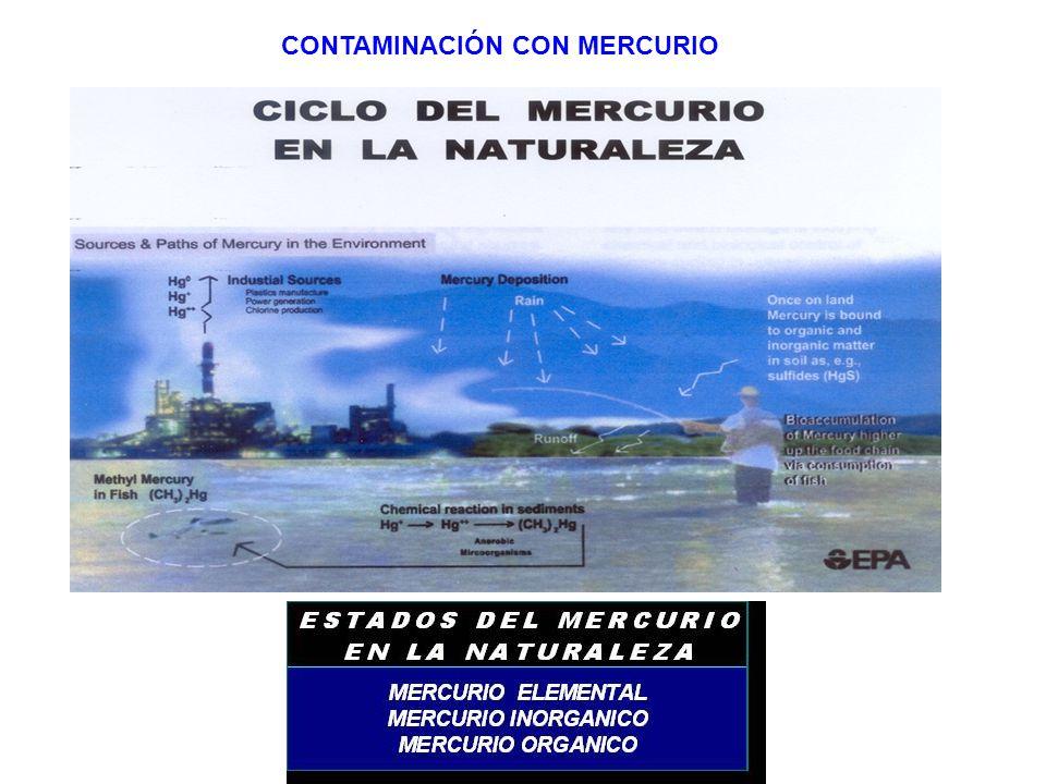 CONTAMINACIÓN CON MERCURIO