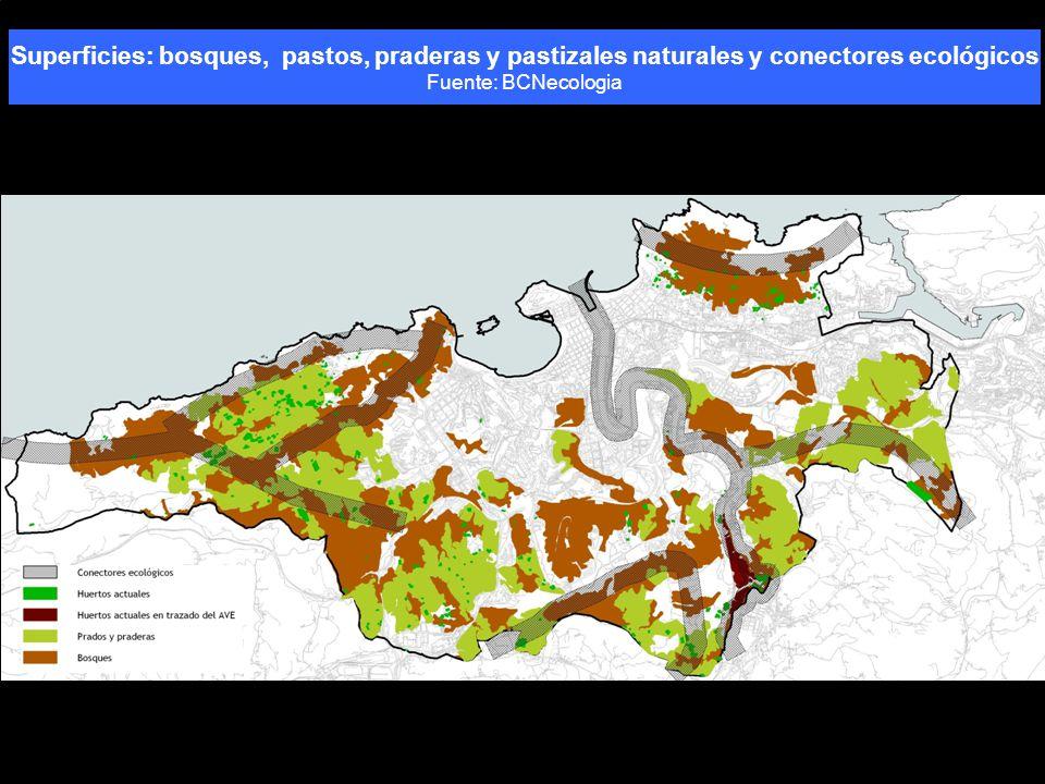 Superficies: bosques, pastos, praderas y pastizales naturales y conectores ecológicos