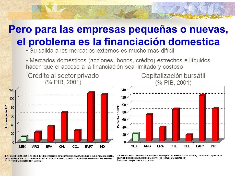 Pero para las empresas pequeñas o nuevas, el problema es la financiación domestica