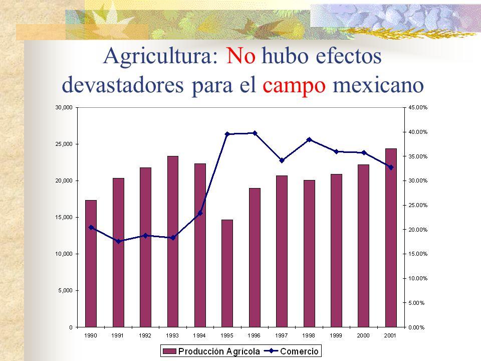 Agricultura: No hubo efectos devastadores para el campo mexicano