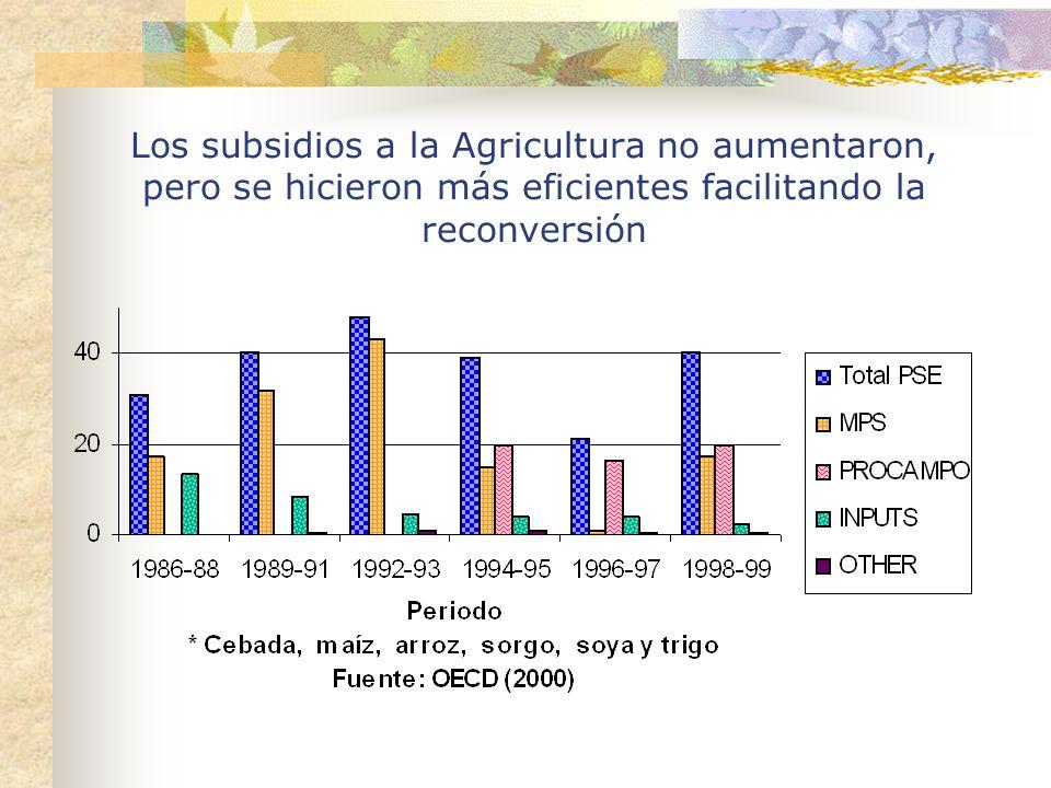 Los subsidios a la Agricultura no aumentaron, pero se hicieron más eficientes facilitando la reconversión