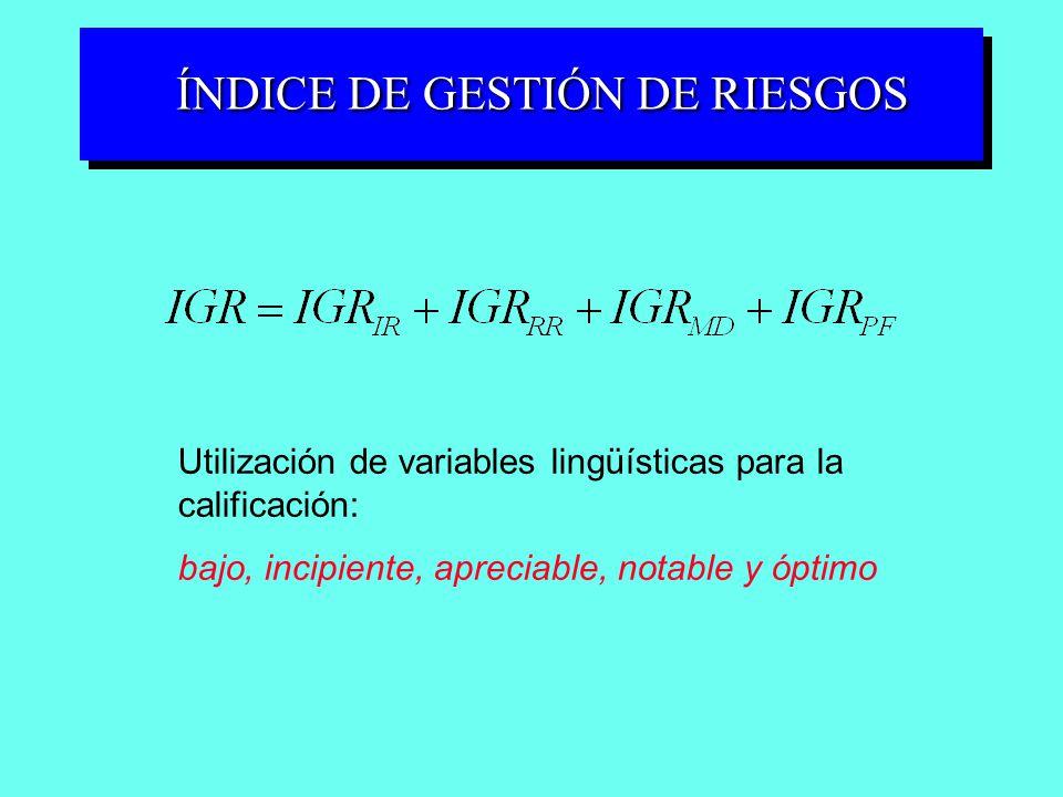 ÍNDICE DE GESTIÓN DE RIESGOS