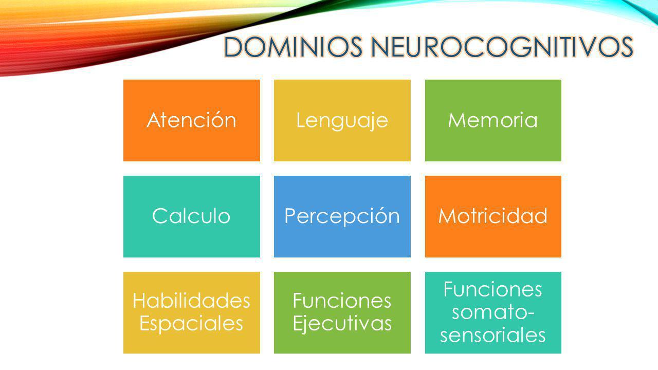 DOMINIOS NEUROCOGNITIVOS