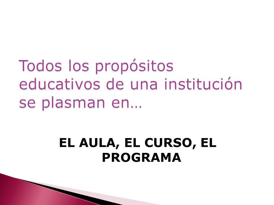 Todos los propósitos educativos de una institución se plasman en…