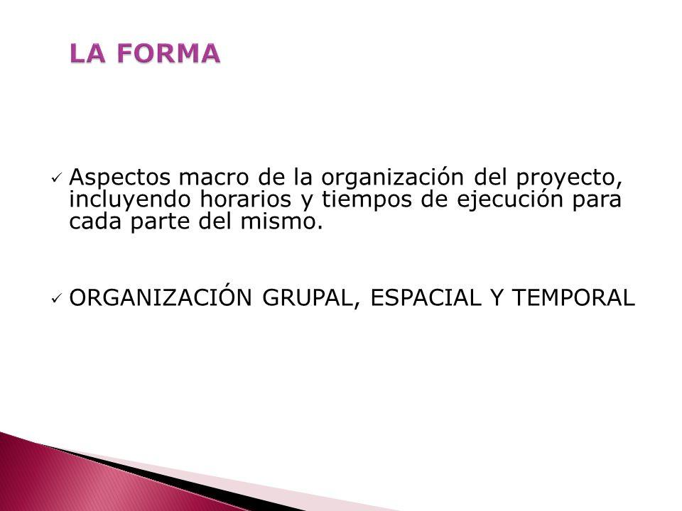 LA FORMA Aspectos macro de la organización del proyecto, incluyendo horarios y tiempos de ejecución para cada parte del mismo.