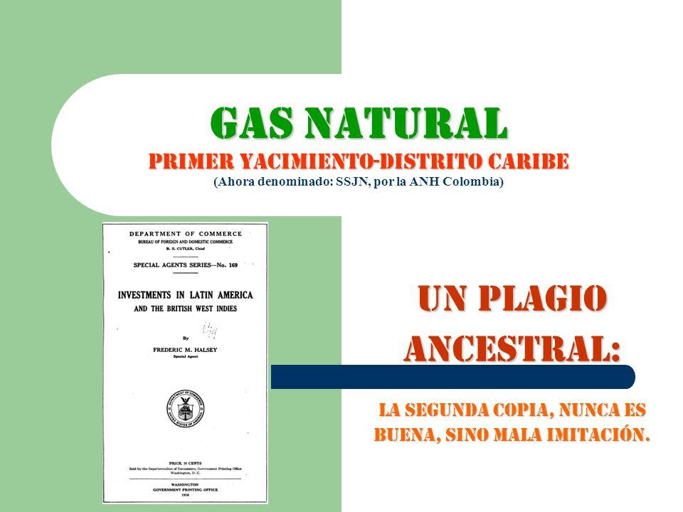 GAS NATURAL PRIMER YACIMIENTO-DISTRITO CARIBE (Ahora denominado: SSJN, por la ANH Colombia)