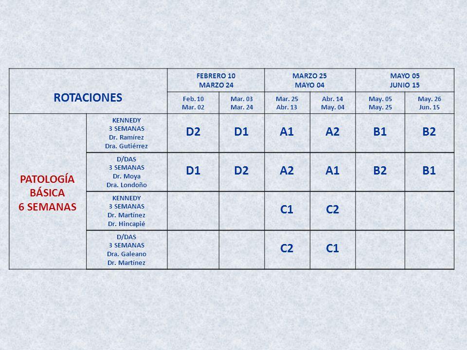 ROTACIONES D2 D1 A1 A2 B1 B2 C1 C2 PATOLOGÍA BÁSICA 6 SEMANAS