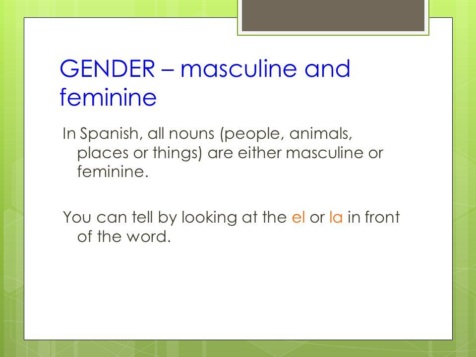 GENDER – masculine and feminine