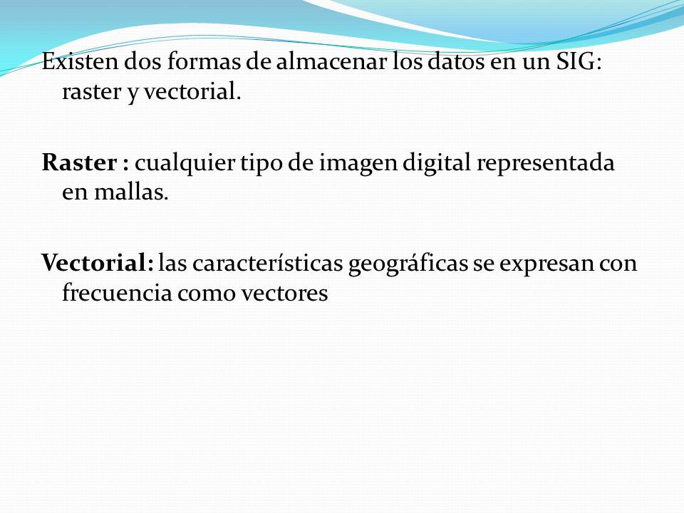 Existen dos formas de almacenar los datos en un SIG: raster y vectorial.