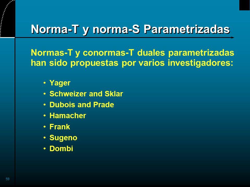Norma-T y norma-S Parametrizadas