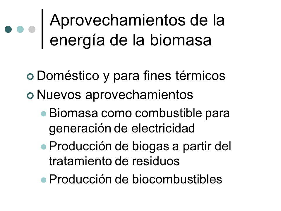Aprovechamientos de la energía de la biomasa