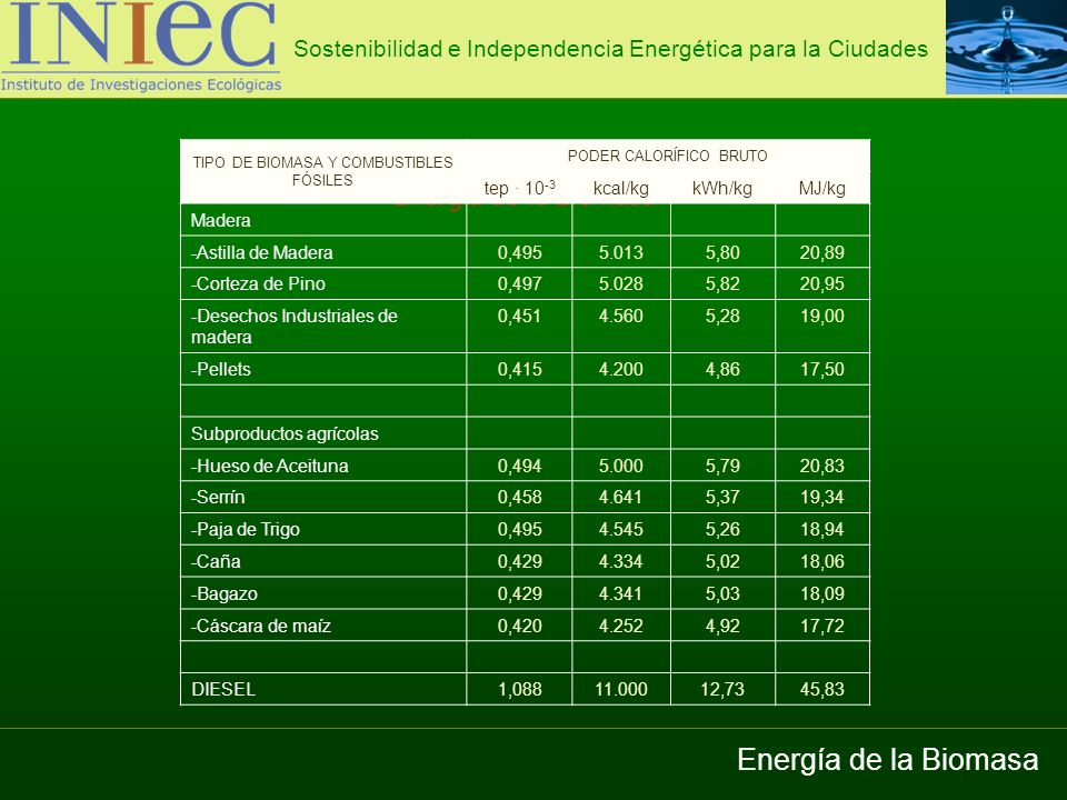 Energía de la Biomasa Energía de la Biomasa
