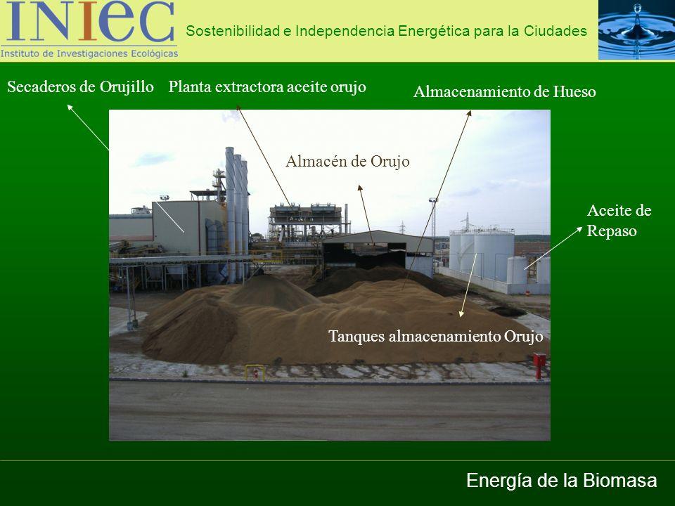 Energía de la Biomasa Secaderos de Orujillo