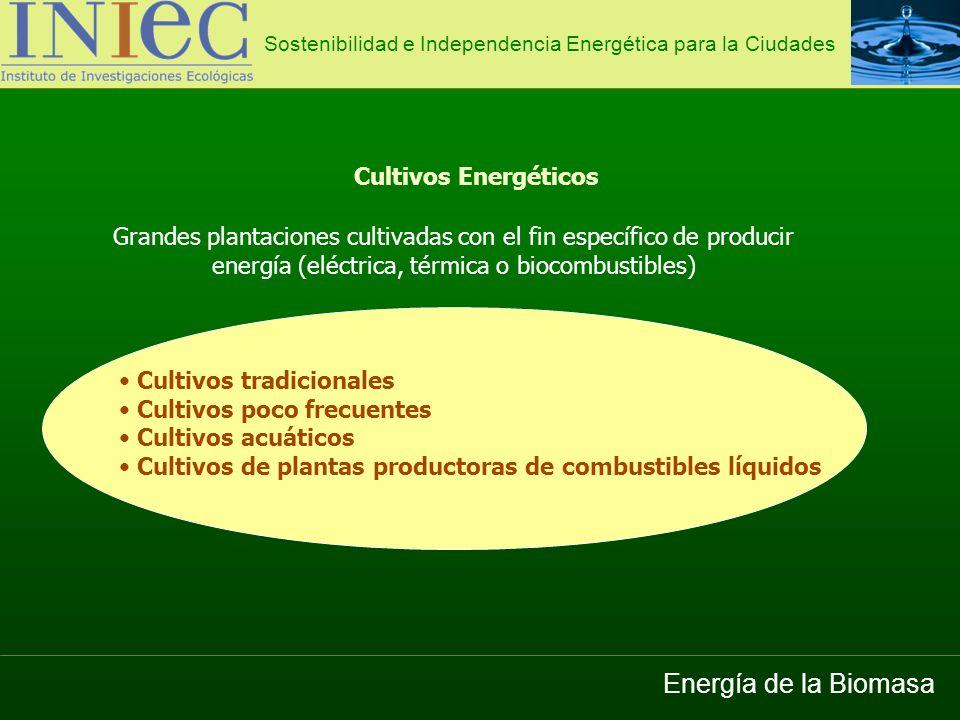 Energía de la Biomasa Cultivos Energéticos