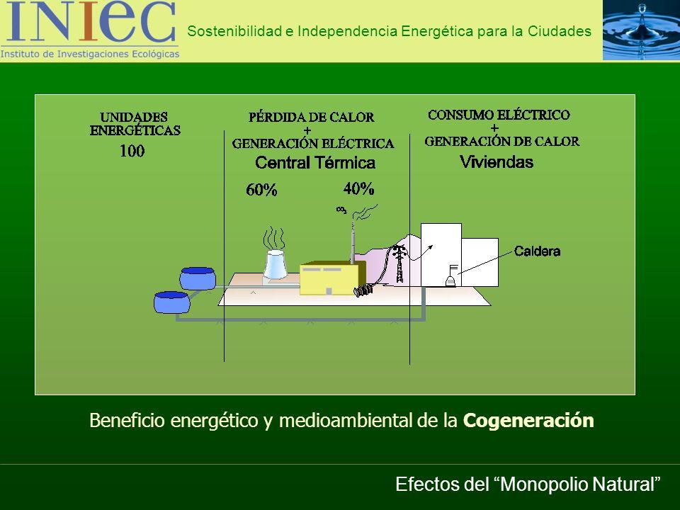 Beneficio energético y medioambiental de la Cogeneración