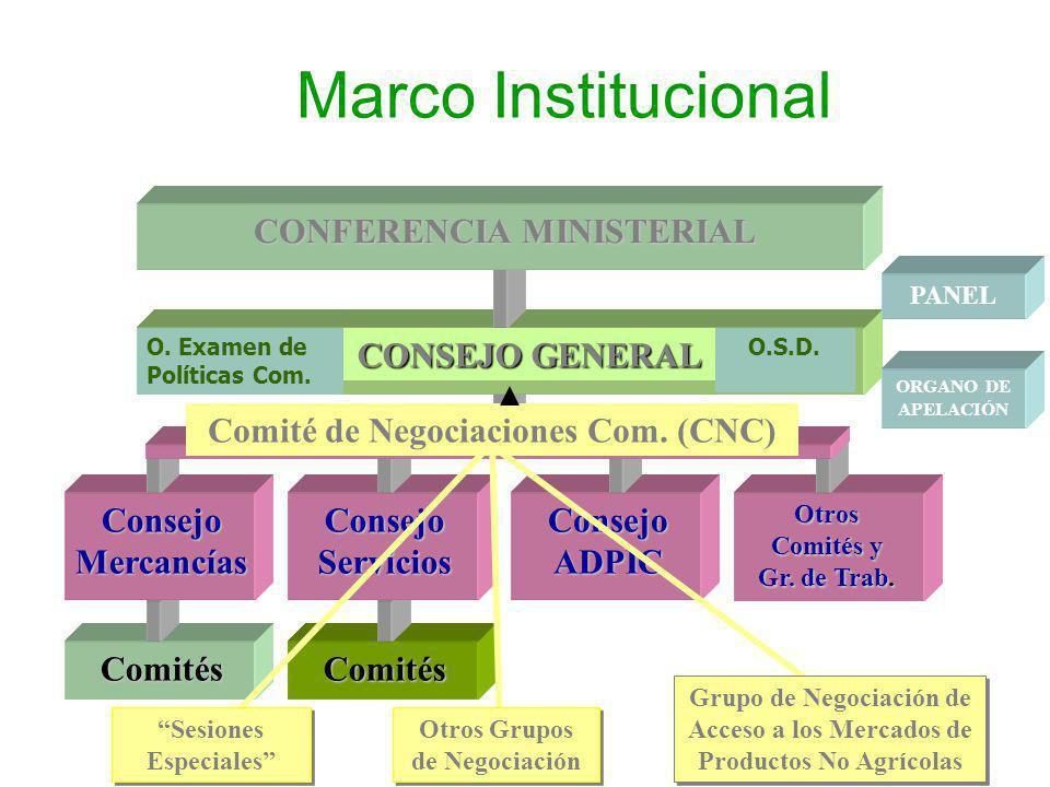 Marco Institucional Comités Consejo ADPIC Consejo Servicios