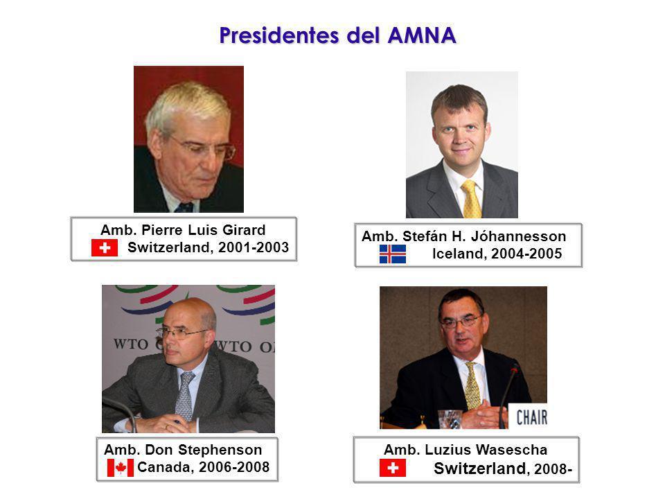 Presidentes del AMNA Switzerland, 2008- Amb. Pierre Luis Girard