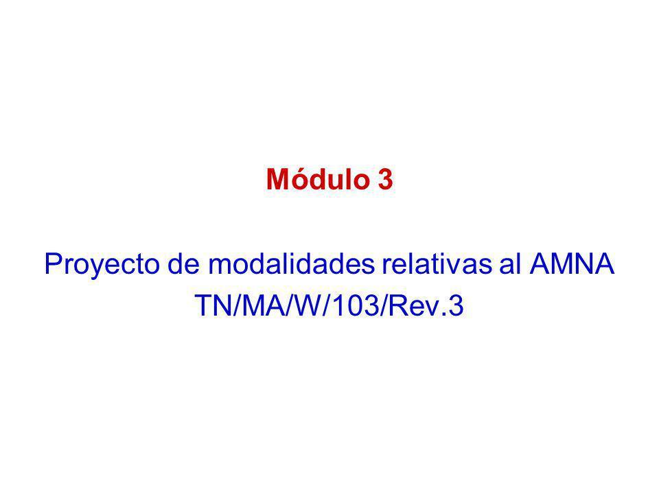 Proyecto de modalidades relativas al AMNA