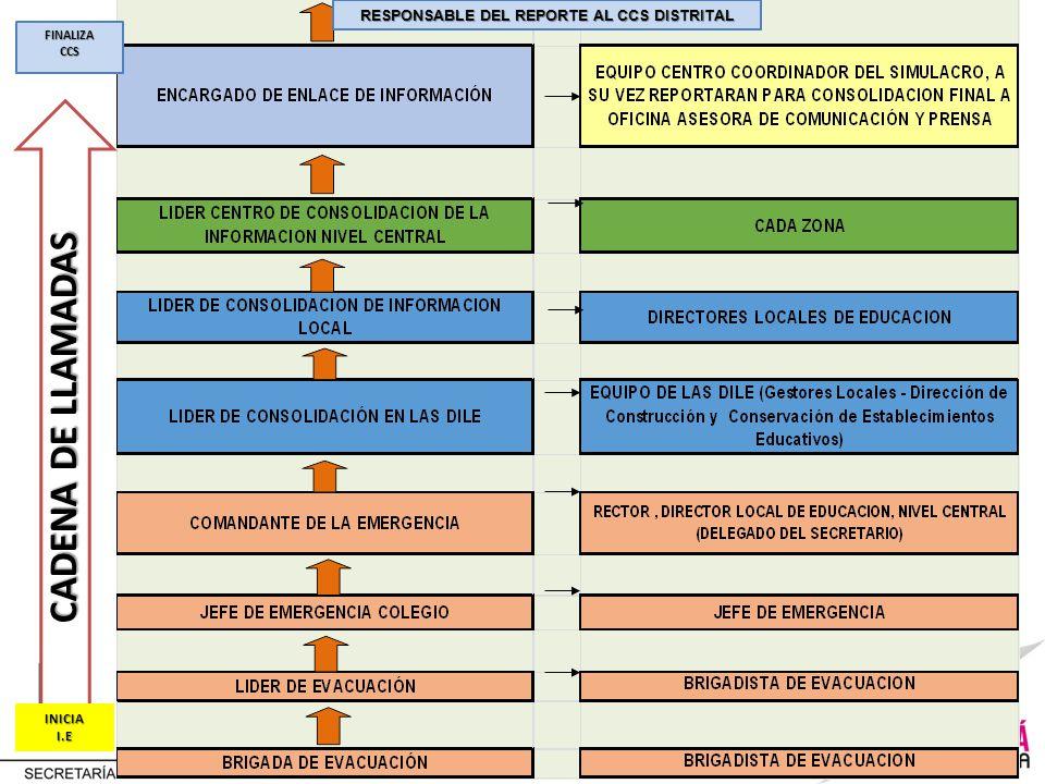 RESPONSABLE DEL REPORTE AL CCS DISTRITAL