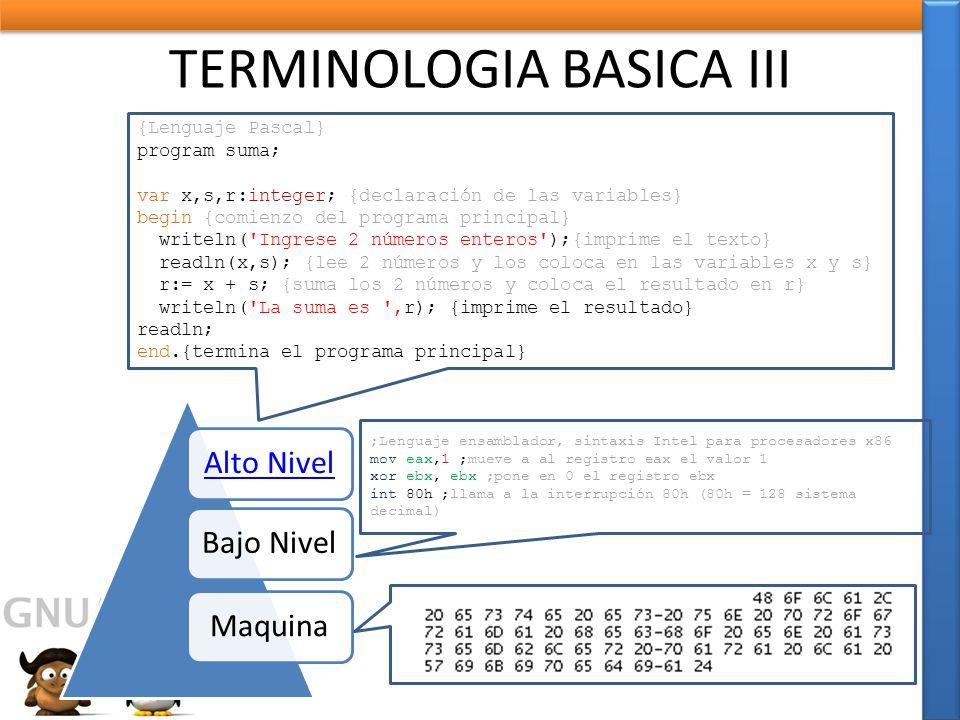 TERMINOLOGIA BASICA III