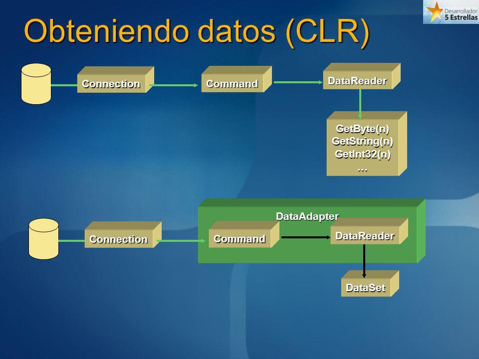 Obteniendo datos (CLR)