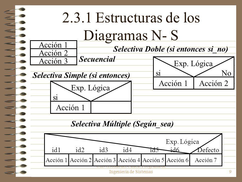 2.3.1 Estructuras de los Diagramas N- S