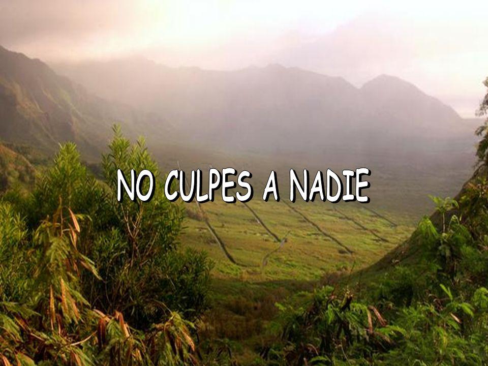 NO CULPES A NADIE