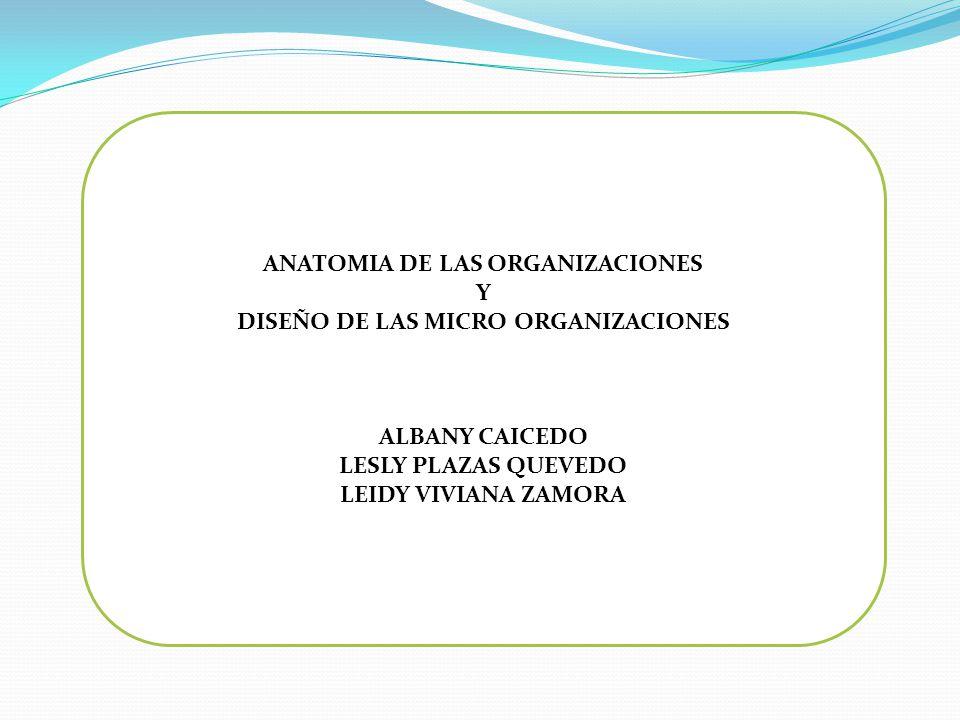 ANATOMIA DE LAS ORGANIZACIONES DISEÑO DE LAS MICRO ORGANIZACIONES