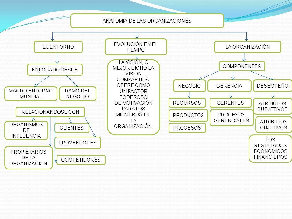 ANATOMIA DE LAS ORGANIZACIONES