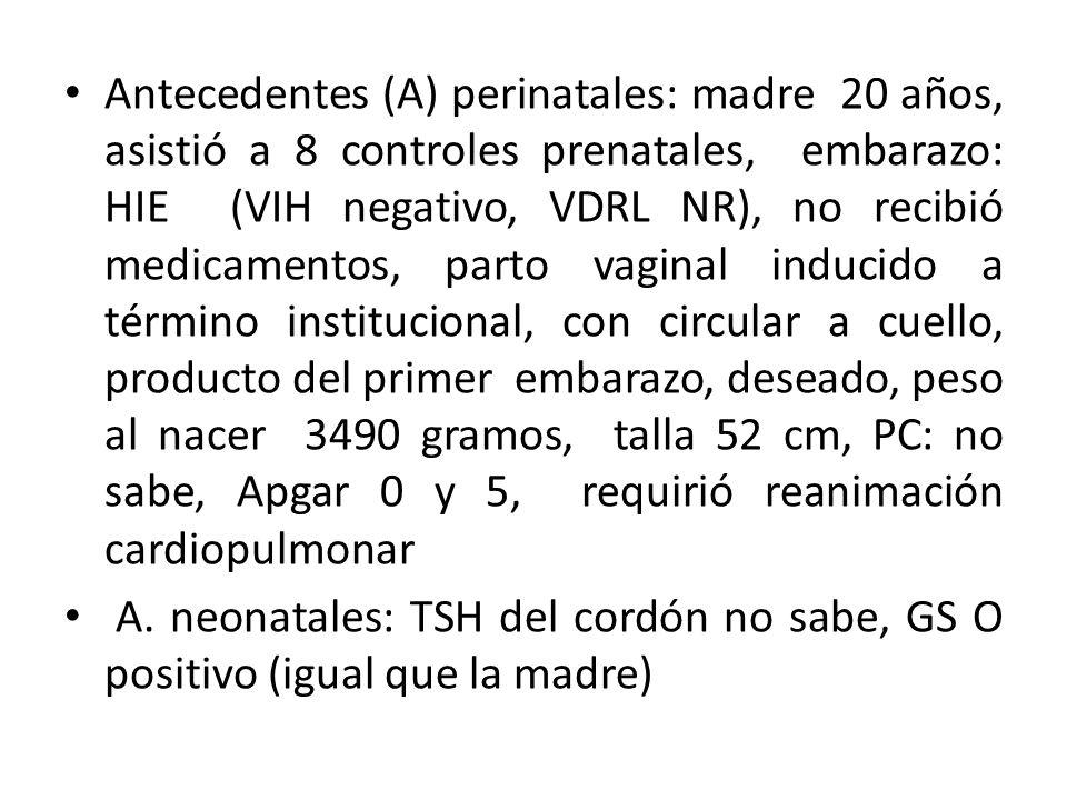 Antecedentes (A) perinatales: madre 20 años, asistió a 8 controles prenatales, embarazo: HIE (VIH negativo, VDRL NR), no recibió medicamentos, parto vaginal inducido a término institucional, con circular a cuello, producto del primer embarazo, deseado, peso al nacer 3490 gramos, talla 52 cm, PC: no sabe, Apgar 0 y 5, requirió reanimación cardiopulmonar