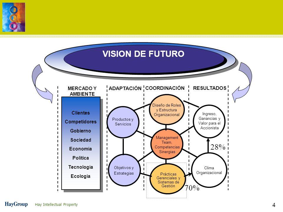 VISION DE FUTURO 28% 70% ADAPTACIÓN COORDINACIÓN RESULTADOS