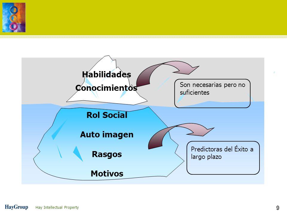 Habilidades Conocimientos Rol Social Auto imagen Rasgos Motivos