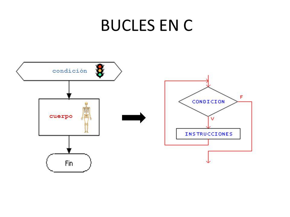 BUCLES EN C condición cuerpo