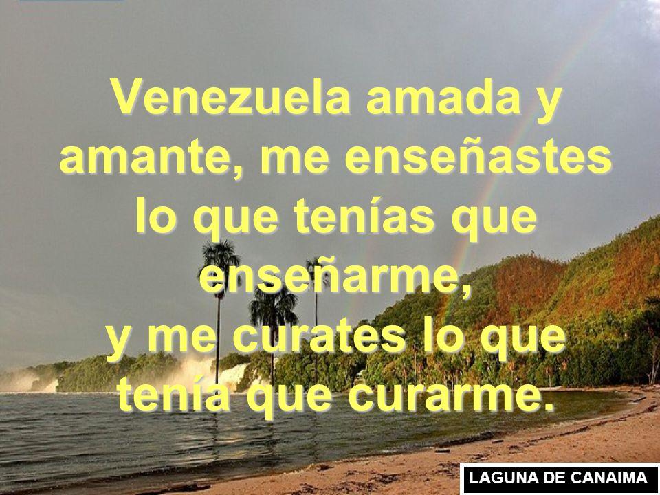 Venezuela amada y amante, me enseñastes lo que tenías que enseñarme, y me curates lo que tenía que curarme.