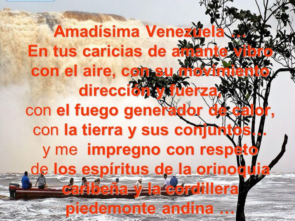 Amadísima Venezuela … En tus caricias de amante vibro con el aire, con su movimiento dirección y fuerza, con el fuego generador de calor, con la tierra y sus conjuntos… y me impregno con respeto de los espíritus de la orinoquia caribeña y la cordillera piedemonte andina …