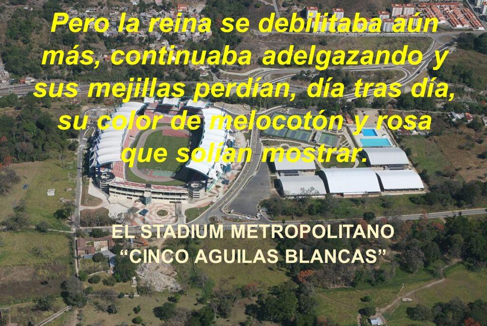 EL STADIUM METROPOLITANO CINCO AGUILAS BLANCAS