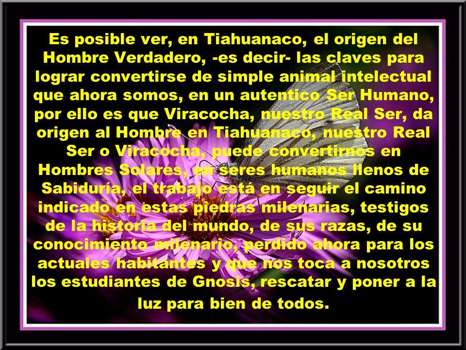Es posible ver, en Tiahuanaco, el origen del Hombre Verdadero, -es decir- las claves para lograr convertirse de simple animal intelectual que ahora somos, en un autentico Ser Humano, por ello es que Viracocha, nuestro Real Ser, da origen al Hombre en Tiahuanaco, nuestro Real Ser o Viracocha, puede convertirnos en Hombres Solares, en seres humanos llenos de Sabiduría, el trabajo está en seguir el camino indicado en estas piedras milenarias, testigos de la historia del mundo, de sus razas, de su conocimiento milenario, perdido ahora para los actuales habitantes y que nos toca a nosotros los estudiantes de Gnosis, rescatar y poner a la luz para bien de todos.